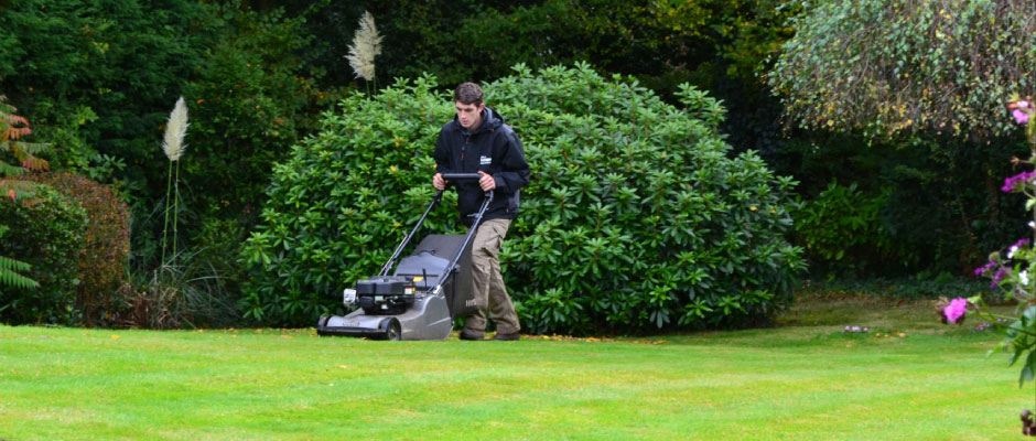 Lawn Care Gt Residential Gt Private Gt Hertfordshire